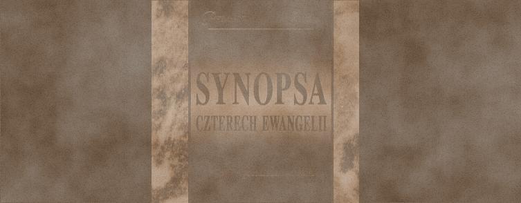 Synopsa a przekład